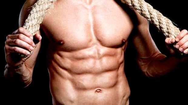3 weeks to shredded review