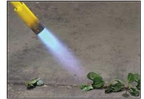 propane torch for weeds reviews