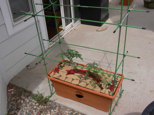 garden patch grow box reviews